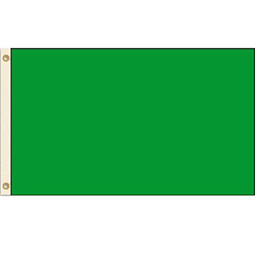 Solid Green 3x5 Polyester Flag