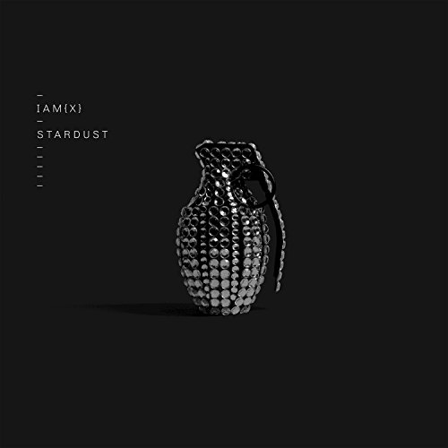Stardust Mix (Stardust (Single Mix))