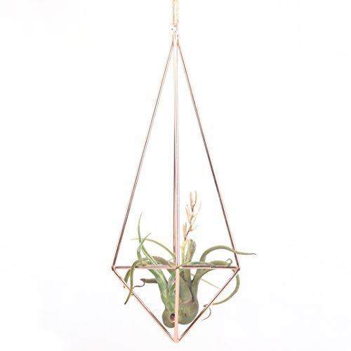 Rustic Style Hanging Pyramid Shape Plant Holder In Rose Gold