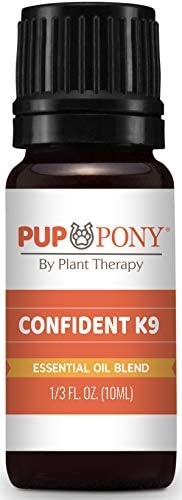 Plant Therapy Pup Pony Aromatherapy product image
