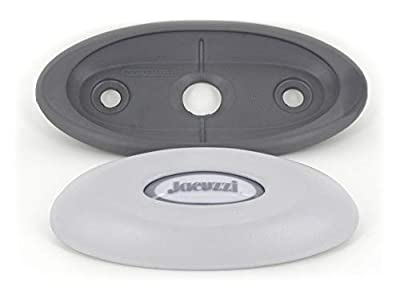 Jacuzzi J-300 Series Oval Pillow Insert + Back Mount