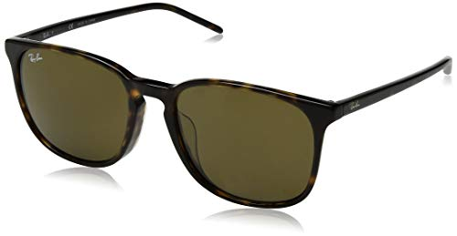Ray-Ban Men's RB4387F Round Asian Fit Sunglasses, Tortoise/Brown, 55 ()