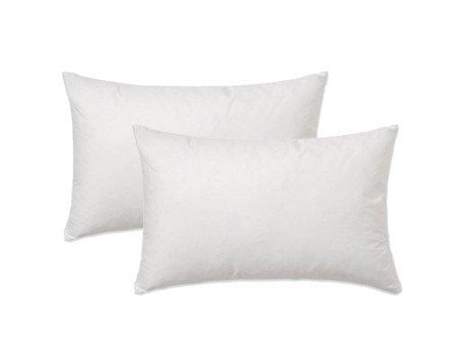 (Set of 2 - Pillow Inserts Rectangle / Lumbar Premium for 12