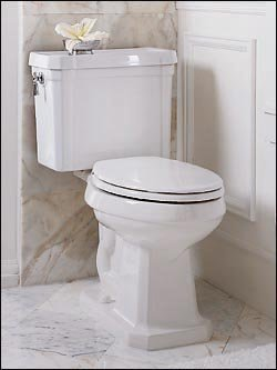 Porcher 41150 Pomezia Round-Front Water Closet Bowl Only, (Porcher Toilet Bowl)