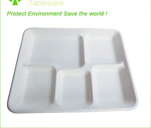(Disposable Plates, 5 Compartment Food Tray, 100% Eco Friendly Compostable Sugar Cane Heavy Duty Fiber Plate, 10.2x8.2'', 100)