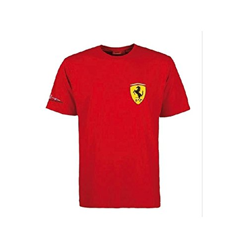 FERRARI Camiseta ROJA niño Fernando Alonso Firma Talla 12: Amazon ...