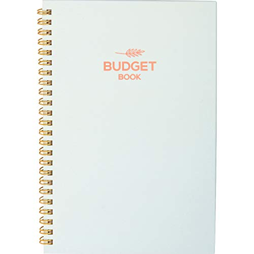 Monthly & Weekly Budget Planner Organizer 2019 - Financial Budgeting Book & Expense Tracker - Control Your Finances - Undated, 12 Months