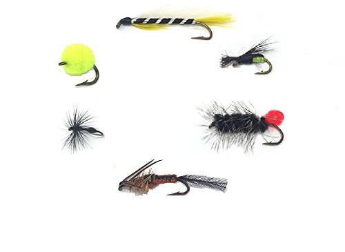 Wooly Worm - Feeder Creek Fly Fishing Assortment - 12 TROUT CRUSHING WET FLIES (Wooly Worm, Ant, Helgramite, Beetle, Egg, and Black Ghost) - 12 Total Flies - 2 of Each Pattern