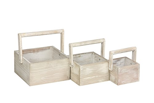 Wooden Boxes Crates - Modern Day Living Wooden Crate Set serving as Decorative Crates for Small Objects on Display