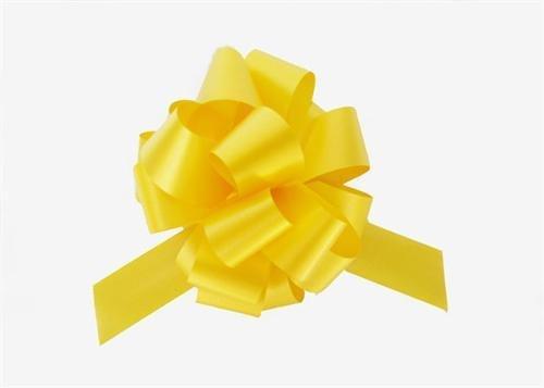Daffodil Pull (8