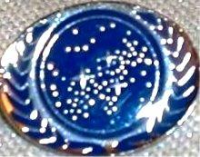 (Star Trek TNG United Federation of Planets Logo PIN)
