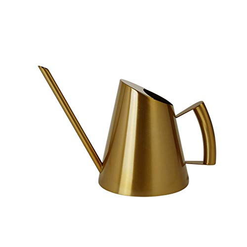 E.Palace Stainless Steel Water Can with Long Spouts Brushed Gold Finish (30 OZ / 900 ML)
