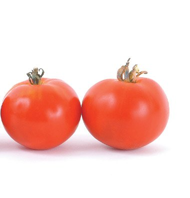 David's Garden Seeds Tomato Slicing Oregon Spring D725QA (Red) 25 Organic Seeds