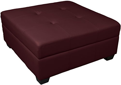 Epic Furnishings Leather Look Upholstered Tufted Padded Hinged Square Storage Ottoman Bench, 36