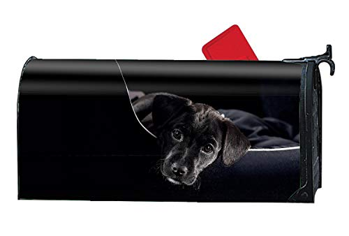 FONDTHEE Cute Black Lab Magnetic Mailbox Cover Decorative Mailboxes Makeover
