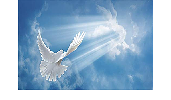 6x4ft Background Peace Dove and Earth Backdrop Photo Studio Photography Props GEFU829