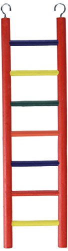 Prevue Pet Products BPV01136 Carpenter Creations Hardwood Bird Ladder with 7 Rungs, 15-Inch, Colors Vary