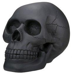Black Skull Head Collectible Skeleton Decoration Statue
