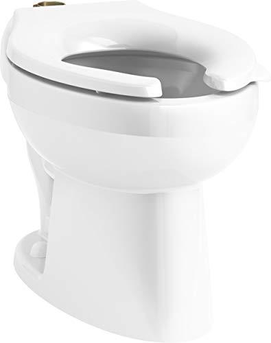 KOHLER 96053-0 Wellcomme flushometer bowl, White