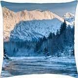 superb alaskan river in winter - Throw Pillow Cover Case (18
