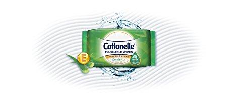 Buy flushable wipes