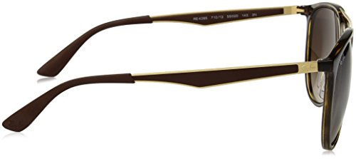 Square Sunglasses 55 Light mm Mens Man Havana Ray Plastic Ban qwFXp1II