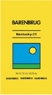 Barenbrug 491145 50 lbs. Kentucky 31 Tall Fescue Grass Seed