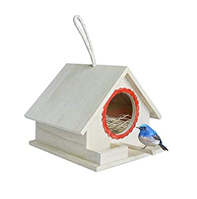 Wooden Bird Nest Box by PetsN'All   Clear View Window Bird Nest for Bird Watching   Heavy-Duty Suction Cups, Angled Roof, Drainage Holes