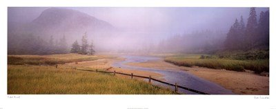 - Tidal Mist by Susan Drinker - 38x15 Inches - Art Print Poster