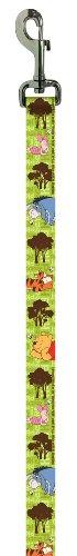 Disney 1DLSH-5 Winnie the Pooh Dog Leash