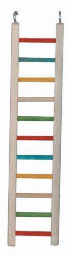 Paradise Toys 24-Inch Wood Cockatiel Ladder by Caitec Corp