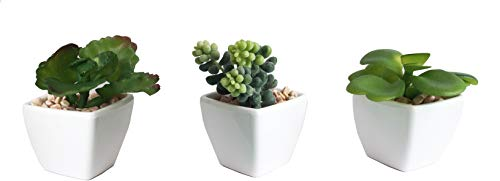 3-Pack Artificial Fake Mini Green Succulent Cactus Plant in White Square Planter Pot w/Sand Gravel for Terrarium Zen Garden Gift Set