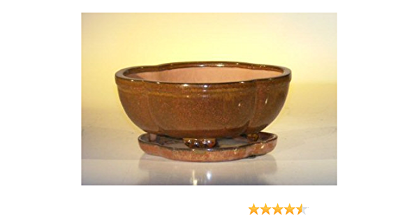 Amazon Com Bonsai Boy S Aztec Orange Ceramic Bonsai Pot Lotus Shape Professional Series With Attached Humidity Drip Tray 8 5 X 6 5 X 3 5 Home Kitchen
