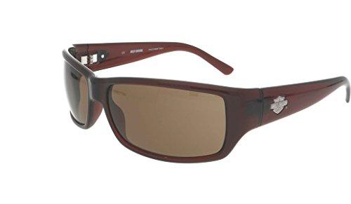 Harley Davidson Men's Sunglasses HDX 860 62mm Brown - Sunglasses Davidson Harley Women's