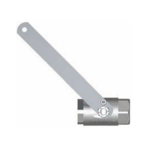 Ball Valve with Actuating Arm, 1 In IPS
