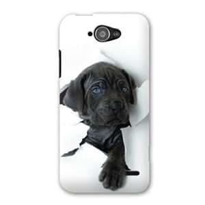 Case orange Hi 4G animals - - dog black -