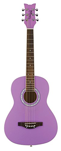 Daisy Rock 6 String Acoustic Guitar Popsicle Purple DR7401-A-U