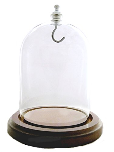 pocket-watch-glass-display-dome-with-walnut-base-silver-hook