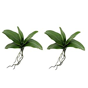 "Angel Isabella 2pc Real Touch Livelike Premium Quality Artificial Phalaenopsis Orchid Foliage-Green (8"" H x 3"" W) 69"