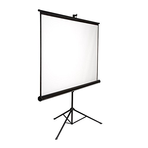 Mustang SC-T8411 Tripod Front Projection Screen (84x84)