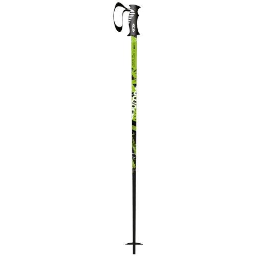 Salomon Arctic Skiing Pole (Black/Green, 110)