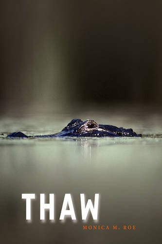 Image result for thaw by monica m roe