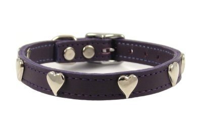Hearts Leather Dog Collar By FURRY (Purple, 12 )