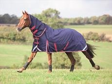 Shires Highlander Plus Lite Lite Lite Combo tappeto, Navy Red bianca 5f8635