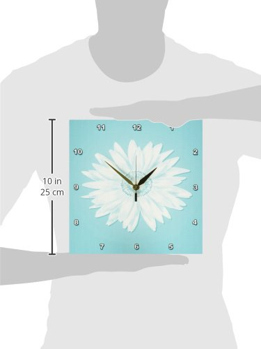 3dRose DPP/_112095/_1 One Simple Pretty White Daisy on A Turquoise Background-Wall Clock 10 by 10-Inch