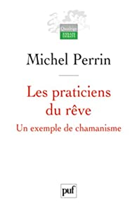 Les praticiens du rêve par Michel Perrin