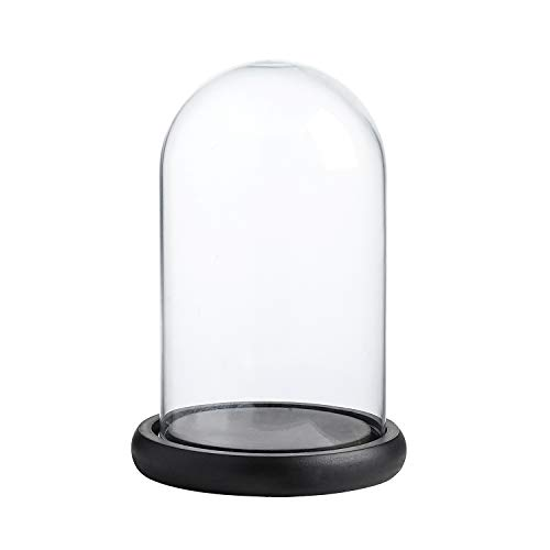 Whole Housewares Decorative Clear Glass Dome/Tabletop Centerpiece Cloche Bell Jar Display Case with Black MDF Base, 4.7