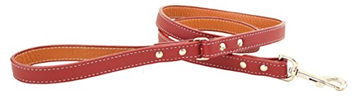 Tuscany Dog Leash Color: Red, Size: 0.75'' x 48'' by Auburn Leathercrafters