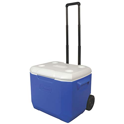 60 quart cooler - 2