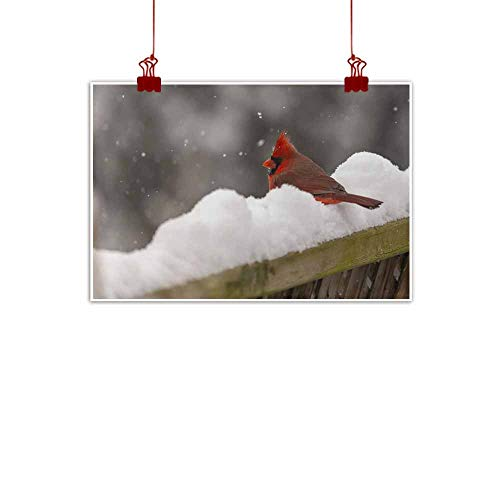 (duommhome Abstract Painting Male Red Cardinal on Snow Covered Fence Decorative Painted Sofa Background Wall 24
